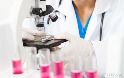 Что входит в клинический анализ крови без лейкоцитарной формулы анализ крови в жулебин